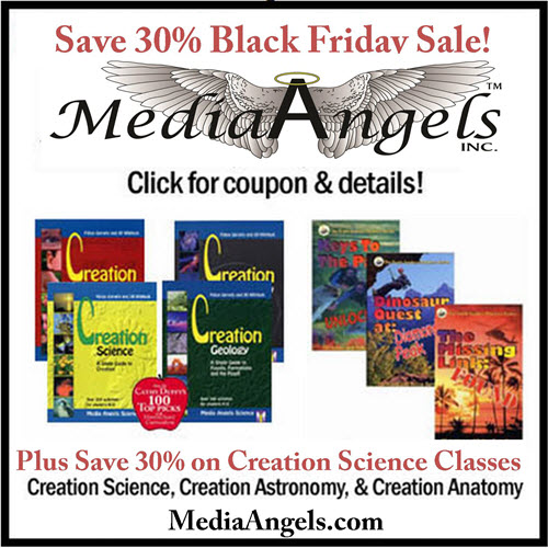 BlackFriday30_MediaAngels