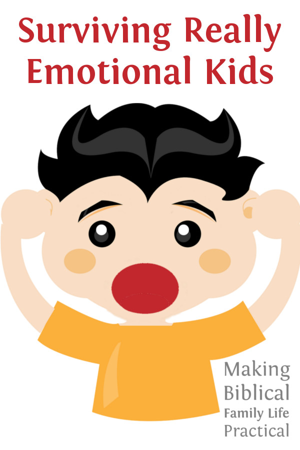 MBFLP 101 - Emotional Kids - V