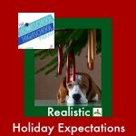HSHSP Ep 34 Realistic Holiday Expectations