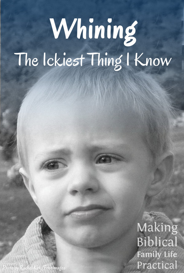 MBFLP 119 - Whining V - pouting-boy-1434753 by Rachel Kirk on FreeImages