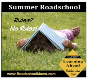 Summer Roadschool Show Button