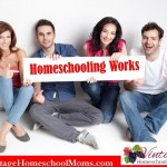 Top 10 Reasons to Homeschool Middle to Highschool