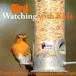 Bird Watching With Kids