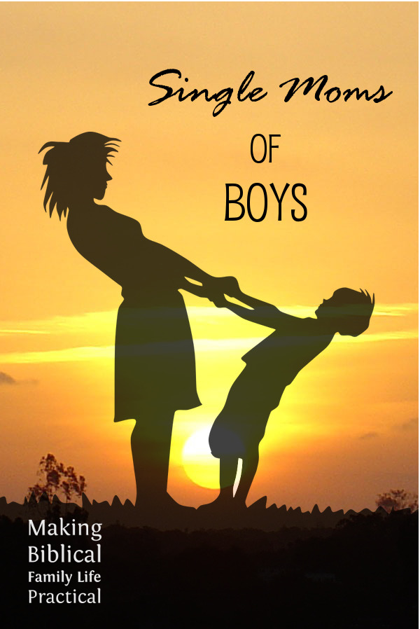 mbflp-144-single-moms-of-boys-v-600x900