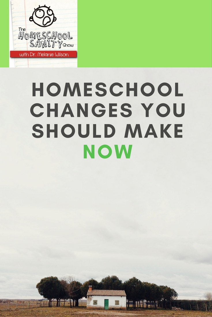 homeschooling should replace normal schooling for Homeschooling is no different than public school, private school, charter school,   will take place in the home, the family's lifestyle and pace will change.
