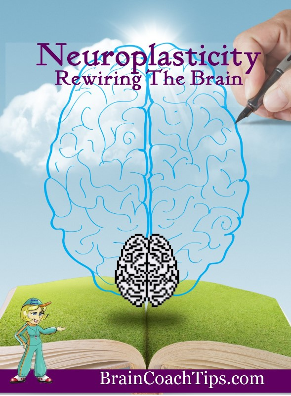 neuroplasticity rewiring the brain