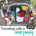 Traveling with a Large Family