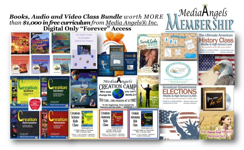 media angels membership
