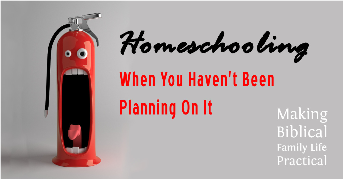 emergency homeschooling | Homeschooling when you haven't been planning on it