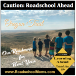 Roadschool Plans for Next Year