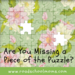 Are You Missing a Piece of the Puzzle?