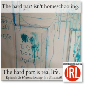 HomeschoolingIRL Homeschooling is a Buzzkill