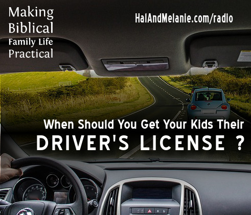 MBFLP - Drivers License