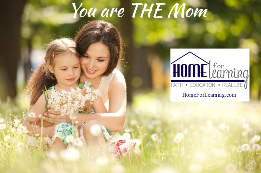 you are the mom, encouragement for mom