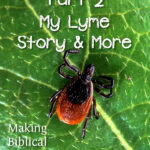 MBFLP – Summertime Safety – Ticks, Lyme, and All That