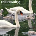 MBFLP 92 – Family Unity