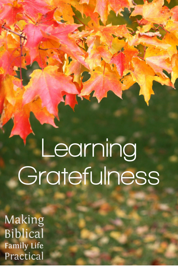 MBFLP - Learning Gratefulness V