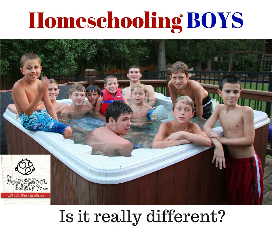 Homeschooling Boys: Is it Really Different? The Homeschool Sanity Show