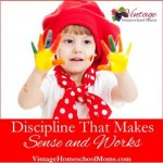 Discipline That Makes Sense And Works