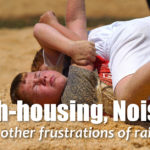 Rough-housing, Noise, and Other Frustrations of Raising Boys – MBFLP 121