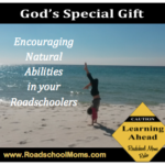 Encouraging Natural Ability in your Roadschoolers