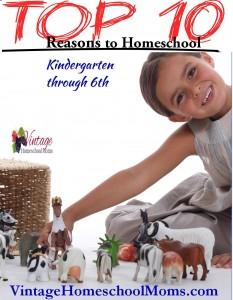 top 10 reasons to homeschool K-6