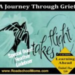 Love and Loss; A Journey Through a Mother's Grief