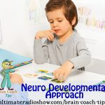 neurodevelopmental approach
