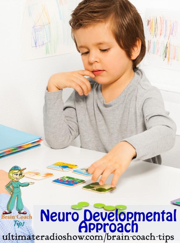 neuro developmental approach