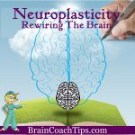 Neuroplasticity – Rewiring The Brain