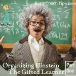 Organizing Einstein: Enhancing the Abilities of the Gifted Learner Part 1