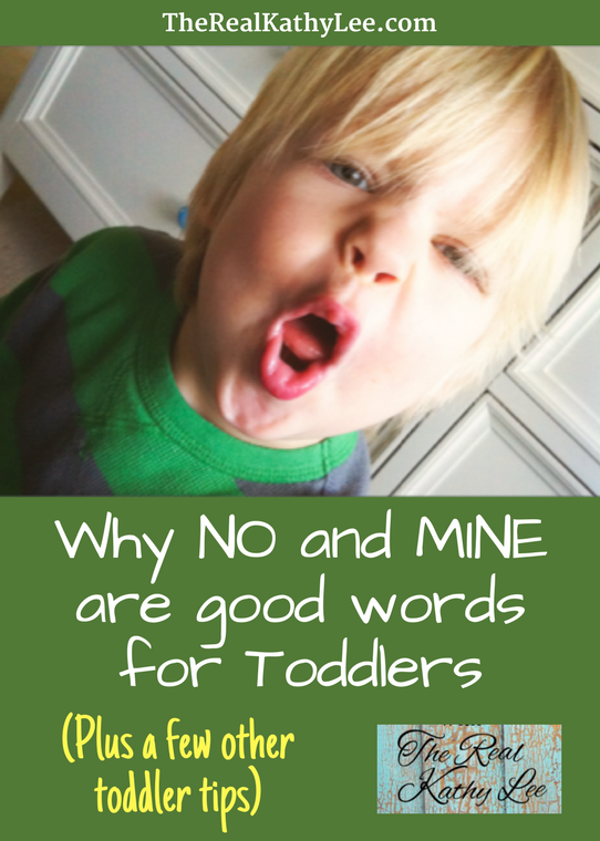 Why NO and MINE are good words for Toddlers (and a few other toddler tips)