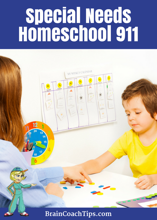 Have you been considering home schooling your child who has been struggling academically or is labeled with ADD, ADHD, Autism, Auditory Processing Disorder or dyslexia? Special Needs Homeschool 911