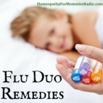 Seasonal Replay: The Flu Duo