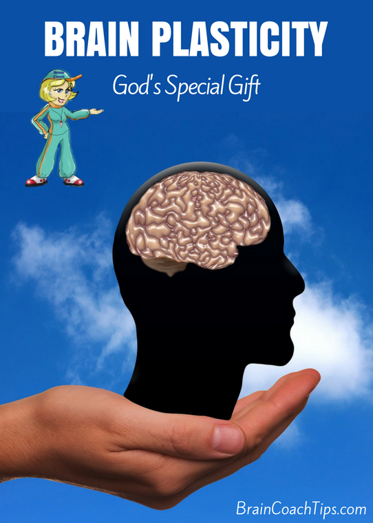 Brain Plasticity - God's Special Gift