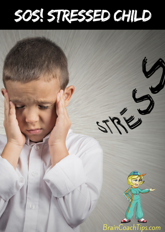 SOS! Stressed Child - with the Brain Coach, Dr. Jan Bedell.