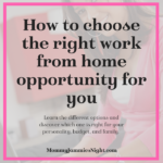 How to Choose the Right Work from Home Opportunity for You