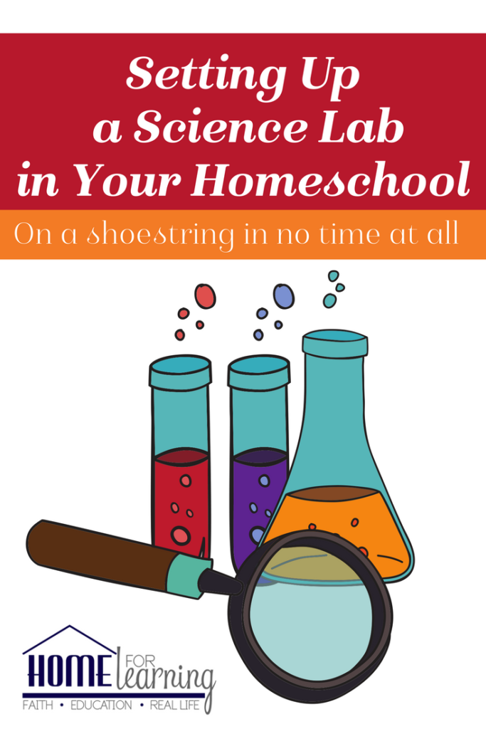 Setting up a science lab in your homeschool on a shoestring budget in no time at all.