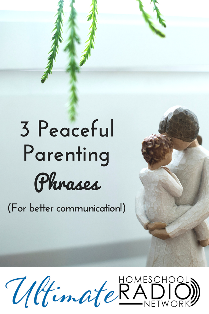 Do you struggle with a child who won't listen or who pushes back on anything you say? Here are 3 powerful, peaceful parenting phrases you can use to improve communication and help your child feel more understood and more valued. #Peacefulparenting #Christianparenting