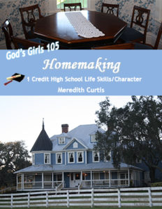 God's Girls 105: Homemaking by Meredith Curtis