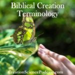 Biblical Creation Terminology