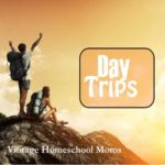 Best Summertime Day Trips
