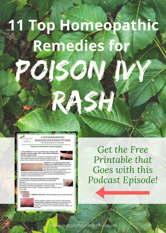 11 Top Homeopathic Remedies for Poison Ivy with Sue Meyer - Free Homeopathy Guide Included!