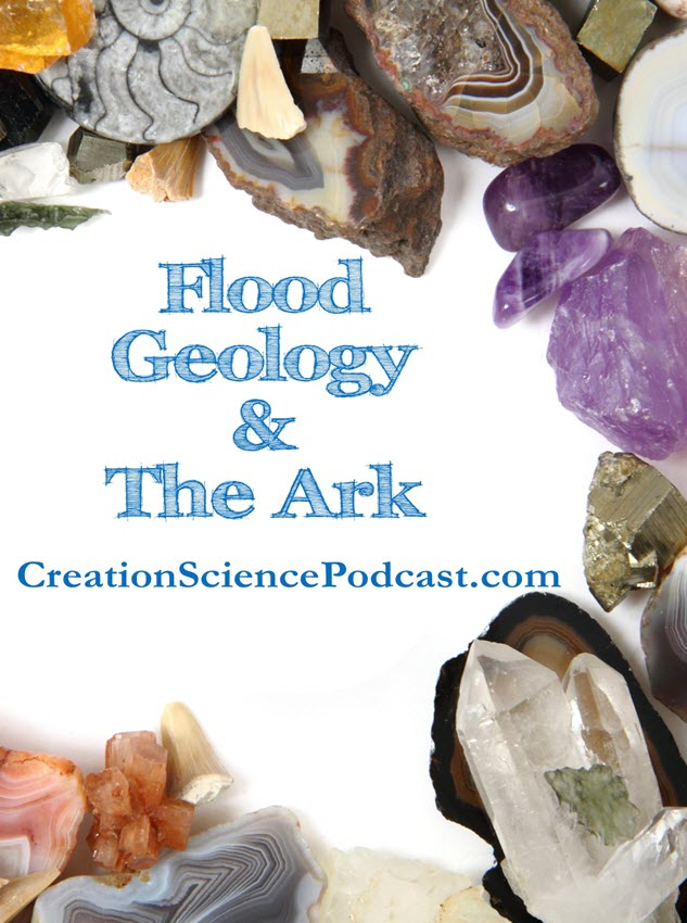 Flood Geology | Flood geology is an interesting study. Many of you are familiar with Noah's ark. #creation #homeschool #creationgeology