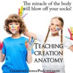 Creation Anatomy | Teaching Creation Anatomy iis an amazing way to study God's handiwork. #podcast #homeschool