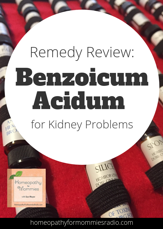 Benozicum Acidum for Kidney Problems - Homeopathy for Mommies with Sue Meyer ND CCH #homeopathy #kidney