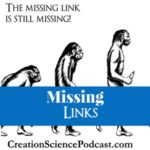 Missing link | Missing link is still missing despite all that evolution claims. #podcast #homeschool