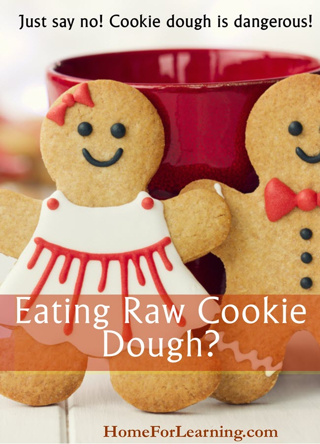 Eating Raw Cookie Dough | Just say no, raw cookie dough is dangerous. | #homeschool #blog #cdcwarning #cookiedough