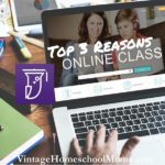 Top Three Reasons For Online Classes