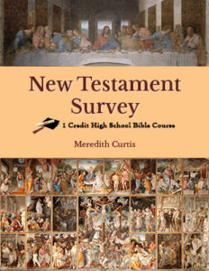 New Testament Survey Class by Meredith Curtis
